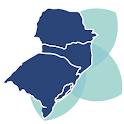 Cone Sul Reumato 2020 icon