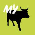MyFlash icon