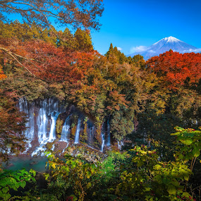 Shiraito Falls with Mt. Fuji and colorful autumn leaf in Fujinomiya, Shizuoka, Japan. by Nuttawut Uttamaharach - Landscapes Waterscapes ( beauty, color, japan, winter, fujinomiya, scenery, summer, scene, red, rock, horizontal, mountain, falls, fall, stream, waterfall, season, day, sky, image, green, natural, reflection, nature, asia, tree, leaf, water, people, shiraito, outdoors, maple, garden, autumn, river, shizuoka, travel, lake, landscape, fuji, colorful )