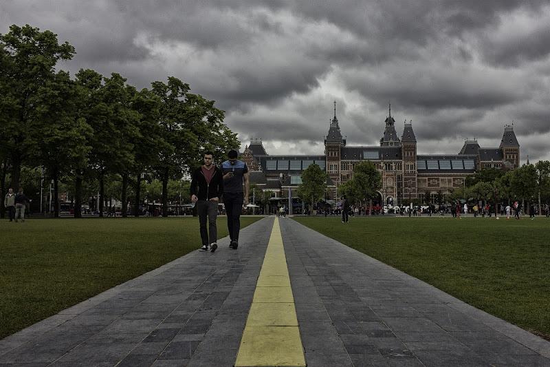 follow the yellow line  di wallyci