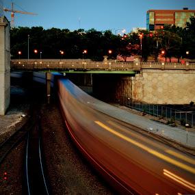 The S Train by Travis Wessel - Transportation Trains ( city, dusk, train tracks, dawn, bridge, trains, train, transportation )