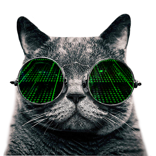 Cat VPN Free - Internet Freedom & Data Privacy
