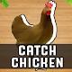 Catch Chicken - Catch Chicken Game