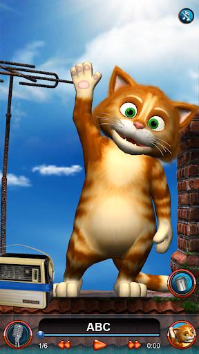 ABC Cat