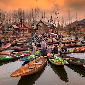 Morning Market at Dal Lake by Joyce Chang - Transportation Boats ( trading, dal lake, sunrise, marketplace, boats, india, srinagar, kashmir, morning )