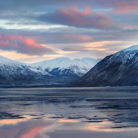 Icy Blue and Pink by Patricia Phillips - Landscapes Travel ( alaska cook inlet turnagain arm winter afternoon )