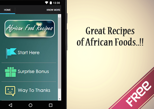 African Food Recipes Guide
