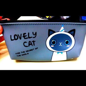 韓國可愛防水貓妃筆袋