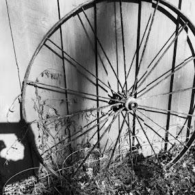 Wagon Wheel  by Debra Rebro - Artistic Objects Antiques