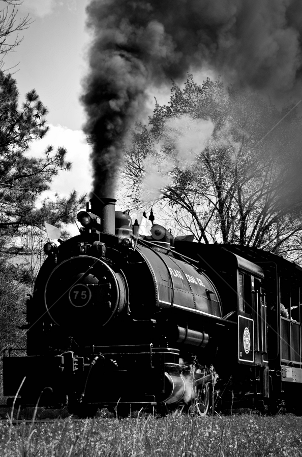 Steam Engine by Todd Lester - Transportation Trains ( steam engine, track, train, smokestack, black, smoke )