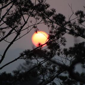 Seoul, South Korea Sunset by Isak Meyer - Landscapes Sunsets & Sunrises