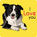 Border Collie Wallpaper icon