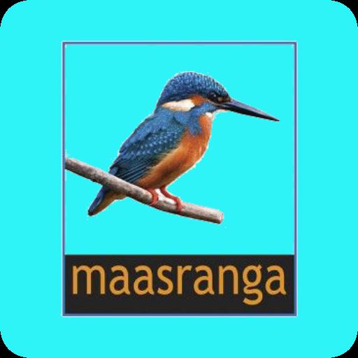 App Insights: Maasranga Television | Apptopia