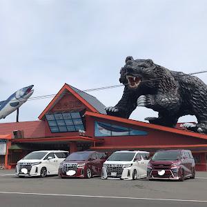 アルファード GGH35W  Executive Lounge S のカスタム事例画像 まこっち(Team's Lowgun北海道)さんの2020年06月15日20:21の投稿