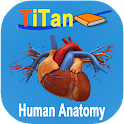Human Anatomy Guide icon