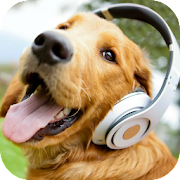 Barking Dog Sounds – Apps on Google Play