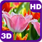 Fascinating Blossoms Tulips icon
