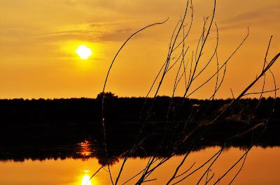Lo specchio del fiume Po di matipav