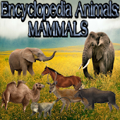 Animal Encyclopedia: Mammals