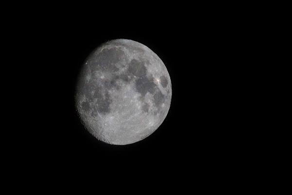 moonlight di Cinzia_torelli
