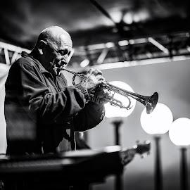 by Petr Homolka - Uncategorized All Uncategorized ( laczo deczi, trumpeter )