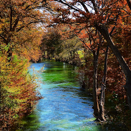 Medina river in the Fall by Cathy Hood - Landscapes Waterscapes