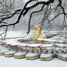 Snowy boats  by Francisco Little - Instagram & Mobile Android ( yellow duck, china, snow, ice, boats,  )