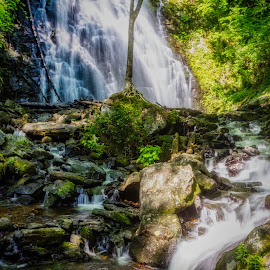 by Teresa Solesbee - Landscapes Waterscapes ( water fall, waterfall mountains beautitul )