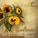Novel Sunflower icon