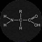 Amino Acids Quiz Icon