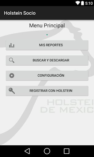 Holstein Socio MX