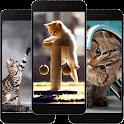 Cute Cat Wallpaper Offline icon