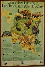 Photo: ...discover & save Zaire biodiversity!!!