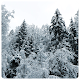 Download Winter Wallpaper 4K For PC Windows and Mac