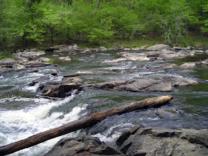 Photo: Eno River State Park