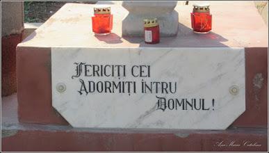 Photo: Troita detaliu,  de pe Str. Curcubeului, zona cimitir - 2016.09.08