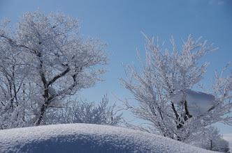 Photo: 北竜町の景色・如月の二