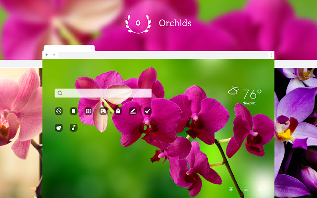 Orchids HD Wallpapers New Tab Theme