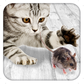 Games for cat Mouse
