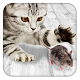 Games for cat Mouse (game)