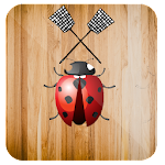 Insect Killer icon