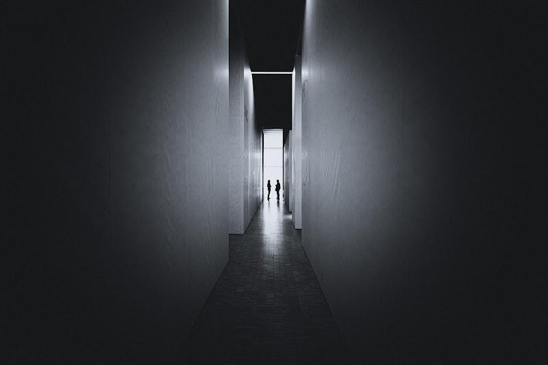 Presenze e linee di Marco Tagliarino