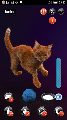 My Kitten (Virtual Pet) for PC