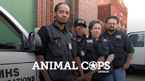 Animal Cops: Detroit thumbnail
