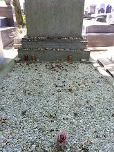 Photo: Gertrude Steine's grave