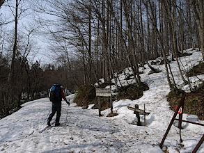 Photo: 登山口は雪少なし