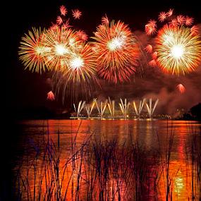 Celebration by Min Hew - Public Holidays Other