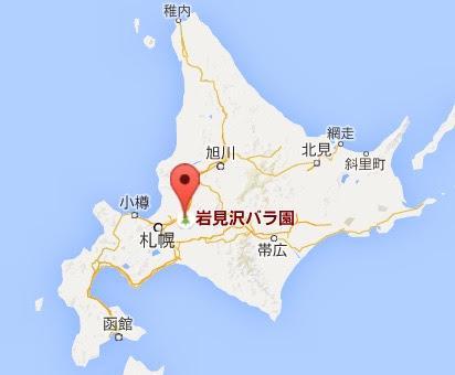 地図:バラ園・いわみざわ公園