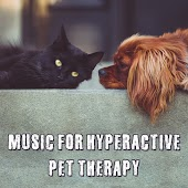 Music for Hyperactive Pet Therapy, Zen Relaxed Dog, Happy Calm Pets