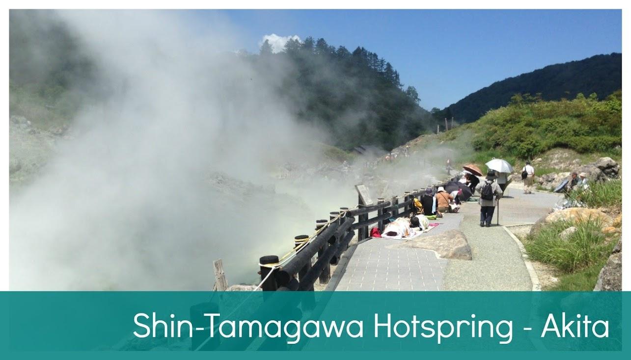 Shin-Tamagawa Hotspring